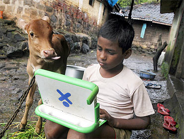 Harish, 11, a school boy, uses a laptop provided under the 'One Laptop Per Child' project by a non-governmental organisation as a calf stands next to him, on the eve of International Literacy Day at Khairat village, about 90 km from Mumbai.