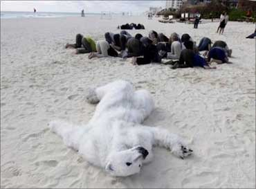 A protestor dressed as a polar bear lying on a beach.