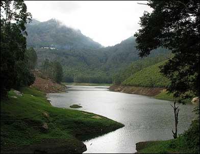 Munnar, Kerala.