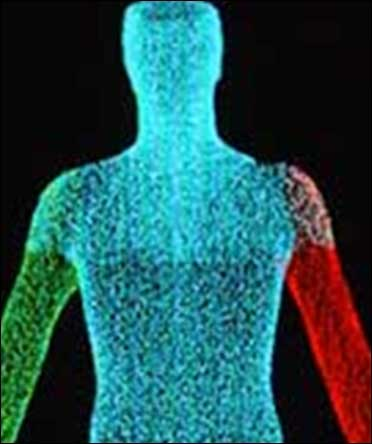 AMAZING! $70-mn organ chips could recreate human body