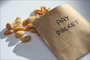 Jobs bonanza: 20% jump in hiring, fatter pay