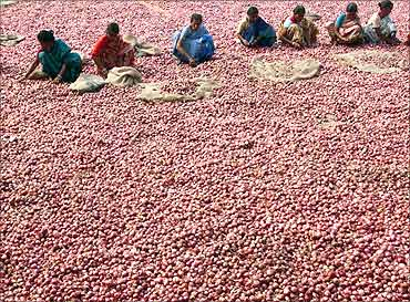 aLabourers sort onions at a wholesale vegetable market in Siliguri.