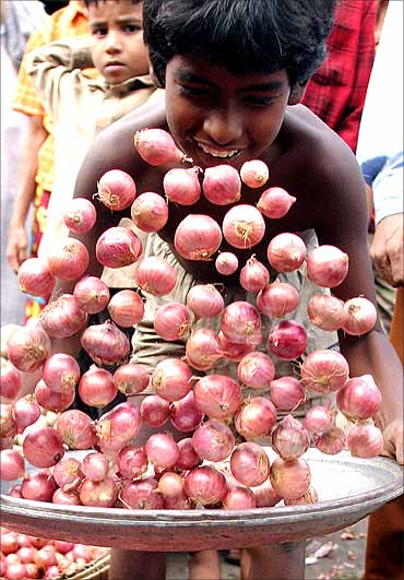 A boy picks up tray of onions.