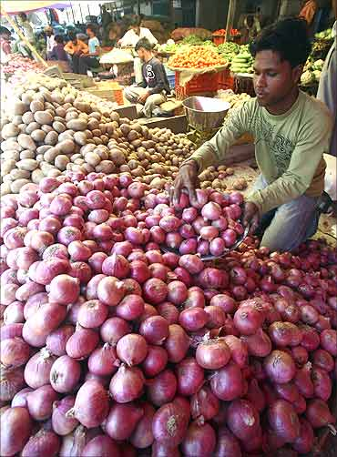 Vendors arrange vegetables at vegetable wholesale market in Chandigarh.