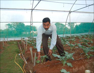 Dnyaneshwar Nivrutti Bodke in his farm.