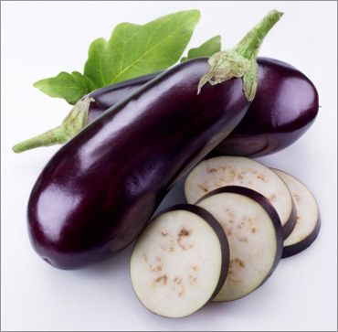 The opposition to Bt brinjal is gaining momentum.