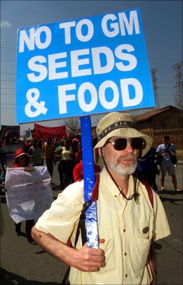 A protestor carrying a 'No to GM seeds and foods' banner.