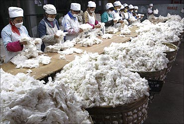 Workers sort out cotton at a textile factory in Suining, Sichuan province.