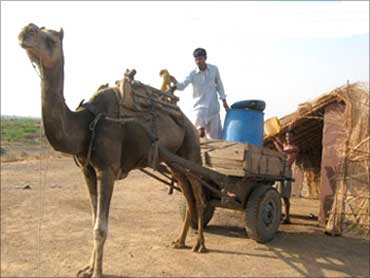 Water getting 'trucked' in by camel cart to Yatra Foundation's School.