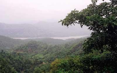 Forests in Madhya Pradesh go hi tech