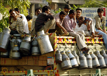 Rising milk prices: Common man suffers again
