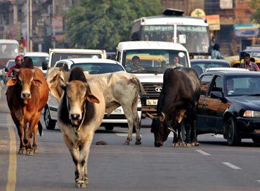 Delhi traffic.