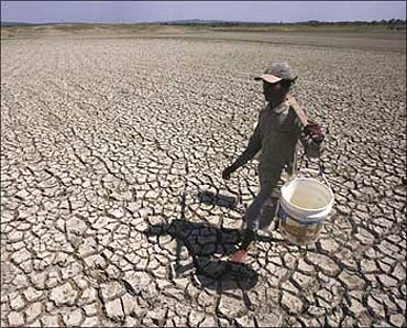Famr sector hit by drought.