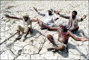 Farmers pray for rains.