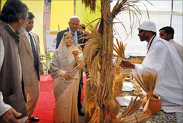 President Pratibha Patil with the innovators.