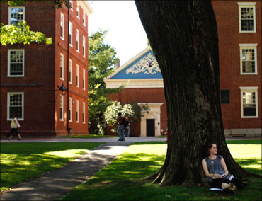 A student sits under a tree in Harvard Yard at Harvard University.