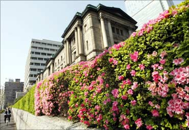 Azalea are seen in full bloom in front of the Bank of Japan headquarters in Tokyo.