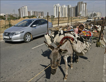 Nomads walk along with their donkeys on a street at Badshapur in Haryana.