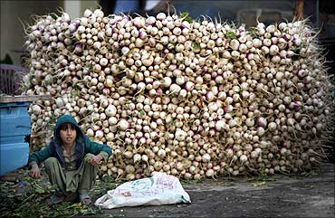 A boy sits next to a pile of turnips in a fruit and vegetable market on the outskirts of Islamabad.