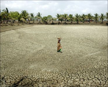 A worker walks through a dry fish pond in a field.