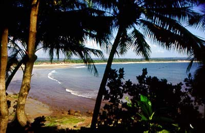 Goan beaches are a major tourist attraction.