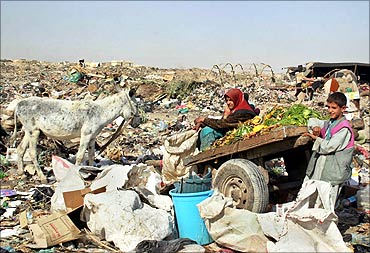 An Iraqi woman sits on a cart loaded with food scraps in a rubbish dump.