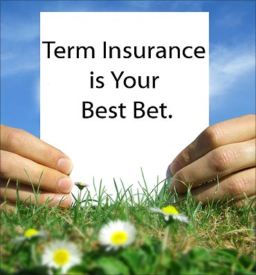 Term insurance vs endowment plan: Which benefits you more?