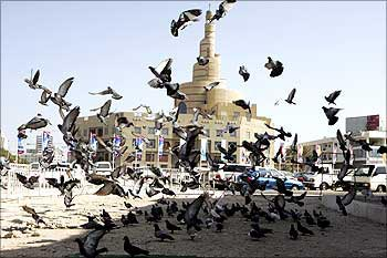 Birds fly near the Great Mosque in Doha, Qatar.