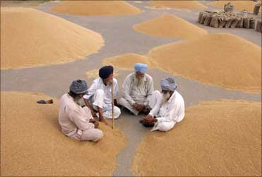 Farmers sit beside heaps of wheat at a grain market in Chandigarh