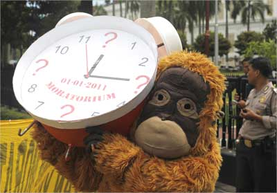 Greenpeace activists dressed as an orangutan.