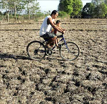 A man and his son ride a bicycle on dry and cracked farmland in San Juan town, near Manila.