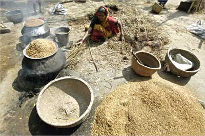 A farmer's wife is seen boiling husk.