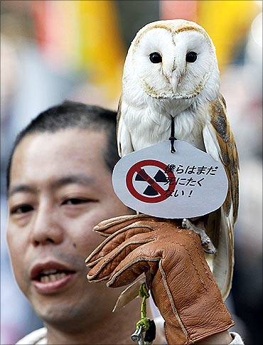 An anti-nuclear protester shows off his owl during a march in front of Tokyo Electric Power Co.