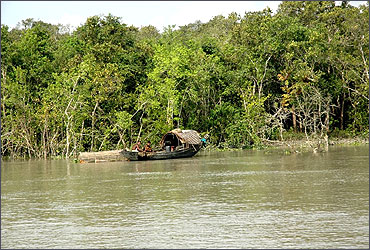Logging boat of the Sundarbans.