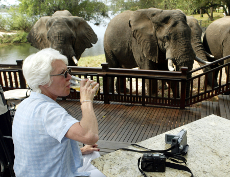 A tourist sips her drink while watching elephants graze at an exclusive hotel in Livingstone.