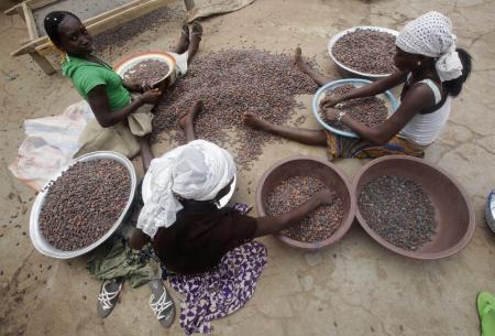 Girls work on cocoa beans in Sankadiokrou.