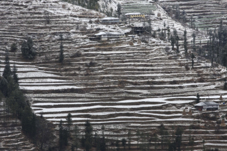 Snow covered fields and houses near Kufri.