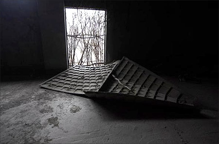 Tree branches line an entrance into an abandoned building.