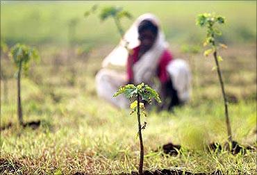 Maha Mumbai SEZ had thought of developing mini or single product SEZ