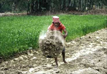 A labourer works under the National Rural Employment Guarantee Act to build a dirt road at Sheikhpur in Bihar.