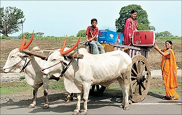 Godrej Chotukool being transported in a bullock cart.