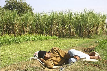 Weather forecast: Why has the Met dept failed - Rediff com