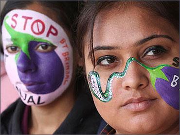 Ramesh at a GM brinjal agitation.
