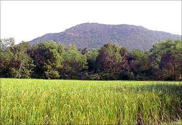 Jharkhand.