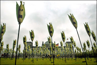 A mock corn-on-the-cob field set up by Greenpeace activists in front of Berlin's parliament building