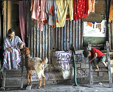 Seema, 32, plays with her goat Rani outside her shanty built under a flyover.