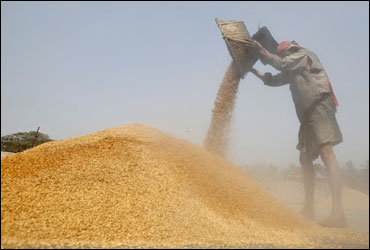A labourer works at a rice mill on the outskirts of Agartala.