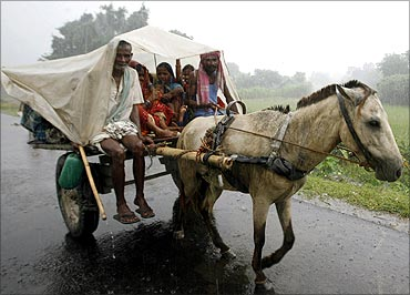People move in a horse-cart during heavy rain at Murliganj village of Madhepura district.