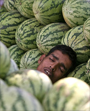 A vendor sleeps inside a stall of watermelons at a roadside stall in Hyderabad.