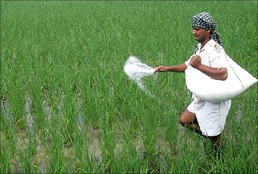 Fertiliser subsidies will cut wastage